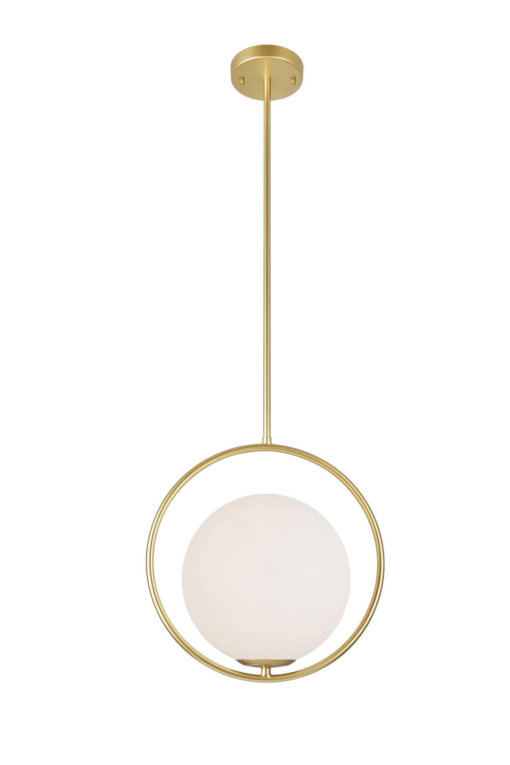 1 Light Mini Pendant with Medallion Gold Finish